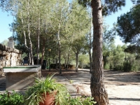 Pilar de Horadada Cheap Bargain property for sale Spain