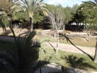 Guardamar del Segura cheap bargain property for sale Spain.