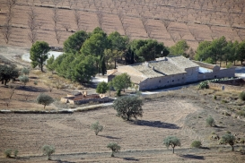 Finca for sale - Property for sale - Yecla - Raspay