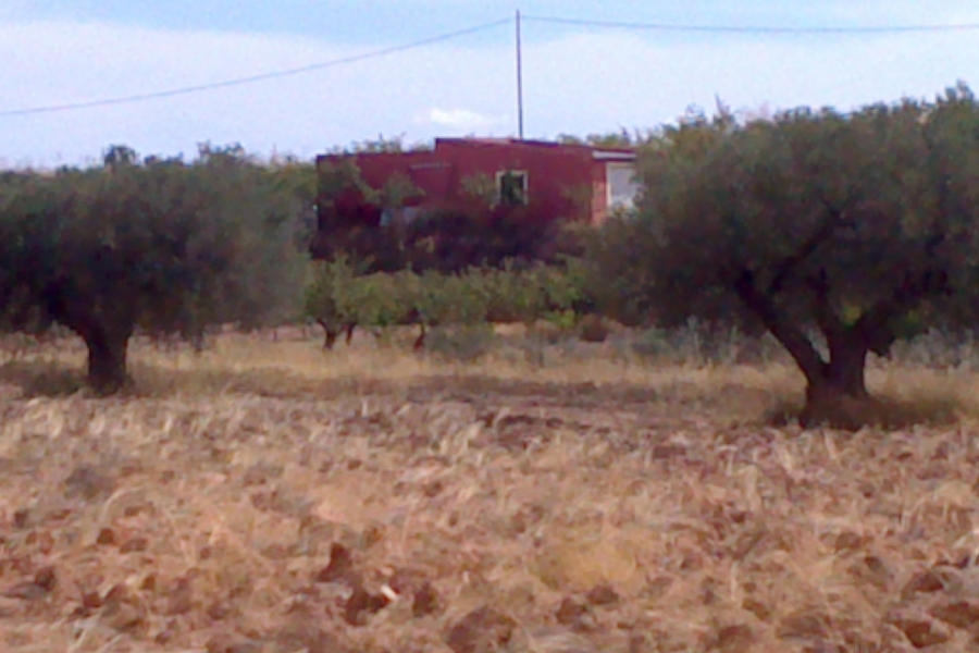 Property Sold - Plot for sale - Jumilla