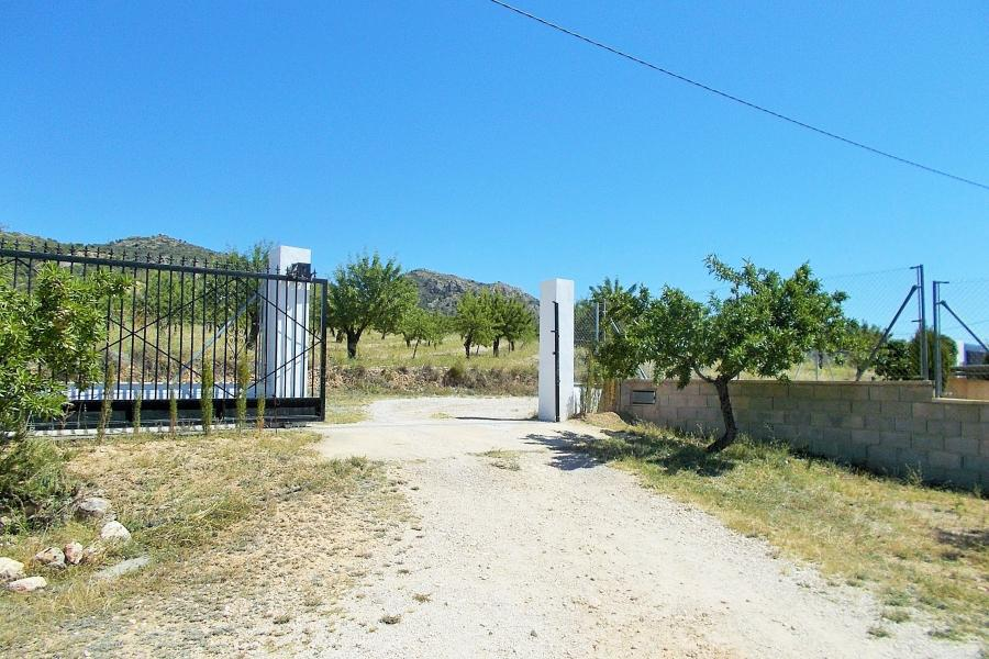 Property for sale - Finca for sale - Sax - Sax Central
